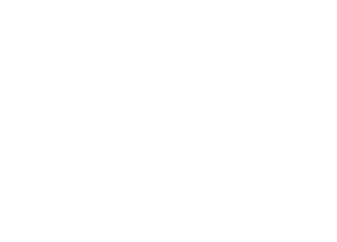 FSConsulting